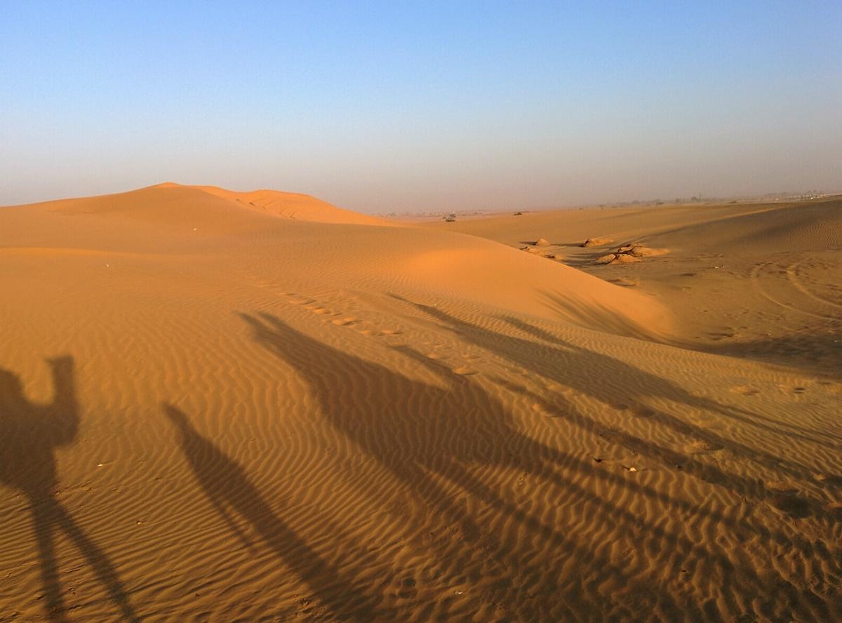 Camel ride 2