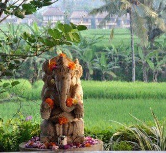 Find Divine Balance in our Bali Bliss retreat October 3 - 11