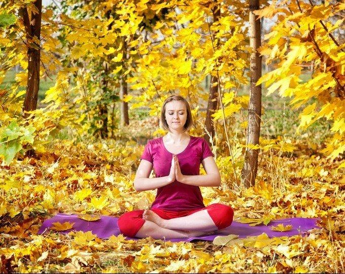 Yin Yoga Workshop: Moving into Autumn with Mysan Sidbo  Mar 4