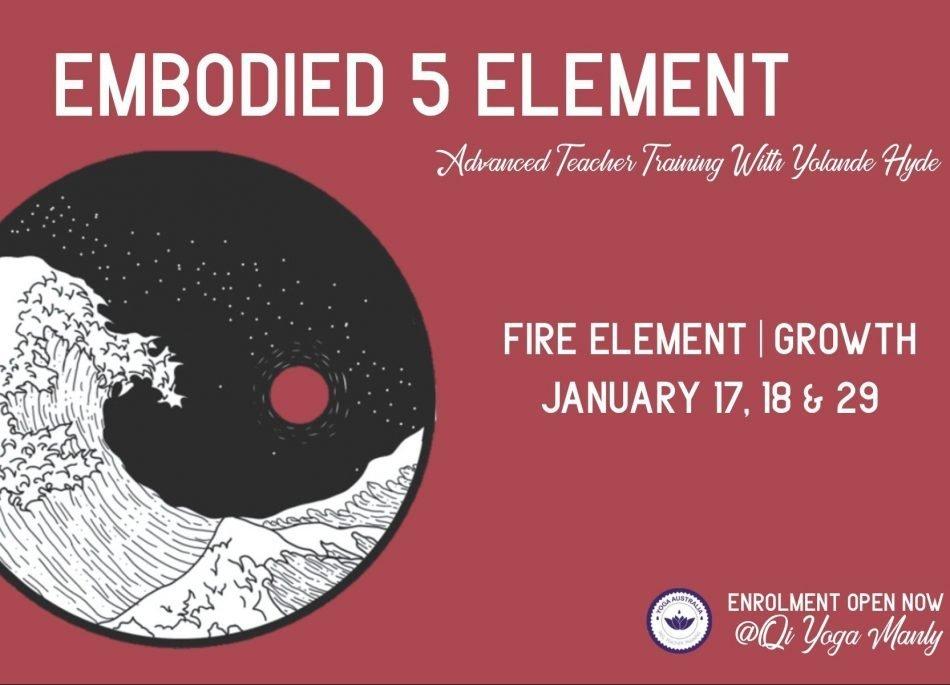 LEVEL 2 TEACHER TRAINING: Fire Element module Jan 17